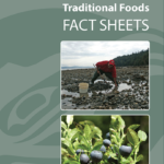 First Nations Traditional Foods Factsheet